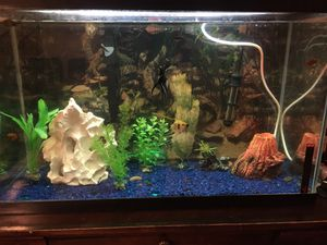 30 gallon Aquarium with fish for Sale in Battle Ground, WA