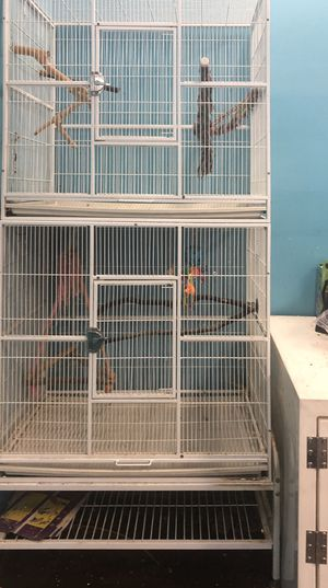 Bird cages for Sale in Little Egg Harbor Township, NJ