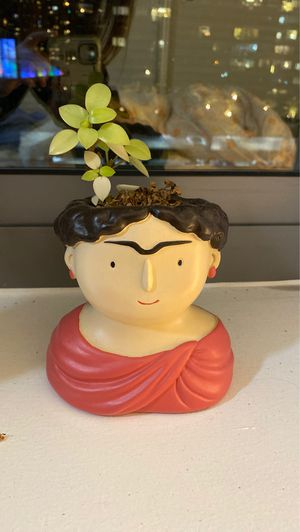 Cute figure planter for Sale in New York, NY