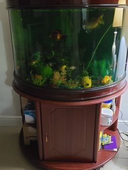55 GALLON FISH TANK WITH STAND , FILTER INCLUDED for Sale in Hialeah,  FL