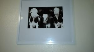 HOME DECOR / COW PICTURE for Sale in Gresham, OR