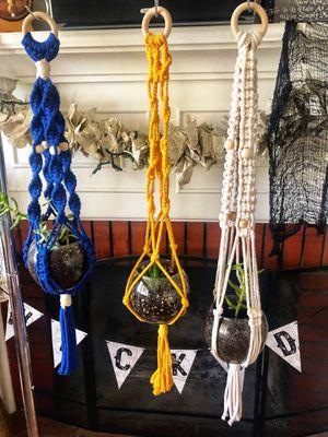 Macrame, planter, hanging planter, macrame planter, hanging plants, boho, bohemian, rustic, primitive, decor, garden, plants, succulents for Sale in Riverside, CA