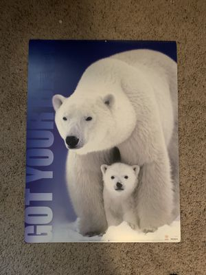 Polar Bear Poster for Sale in Katy, TX