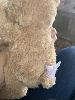 Baby Gund Peek A Boo Bear for Sale in Canby,  OR