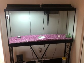 55 Gallon Fish Tank Comes With Everything You See for Sale in South Brunswick Township,  NJ