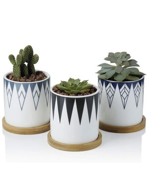 """Succulent Plant Pots 3"""" with Bamboo Trays for Sale in New Port Richey, FL"""