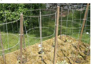 3 tomatoes cages for Sale in Annandale, VA