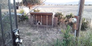 Full size bird cage for Sale in Hollister, CA