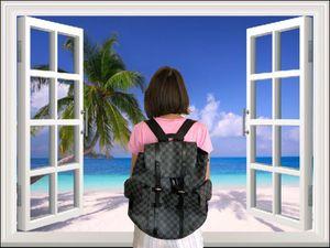Louis Vuitton Christopher PM Backpack Black Damier Graphite Bag Unisex for Sale in Las Vegas, NV