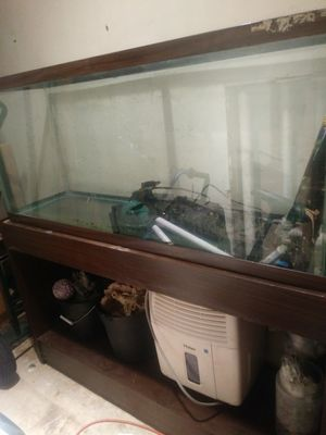 55 gallon aquarium with filter,heater,and stand. Has gravel and other decor just needs a light for Sale in Hamilton, OH