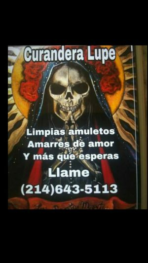Lupe for Sale in Grand Prairie, TX