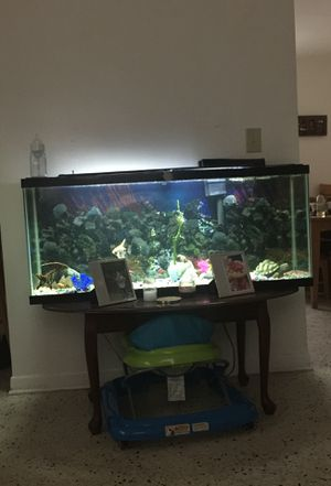 77 gallon aquarium fish tank for Sale in Miami, FL