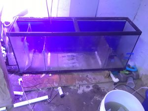 Fish tanks for sale for Sale in Lombard, IL