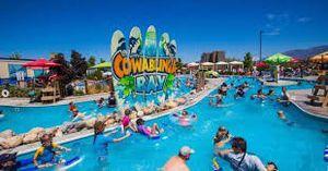 Cowabunga bay season passes 30$ ea single day 17$ ea for Sale in Las Vegas, NV