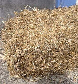 Hay for Sale in Hemet, CA