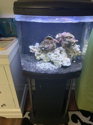 Nano cube 24g aquarium for Sale in Nashville, TN