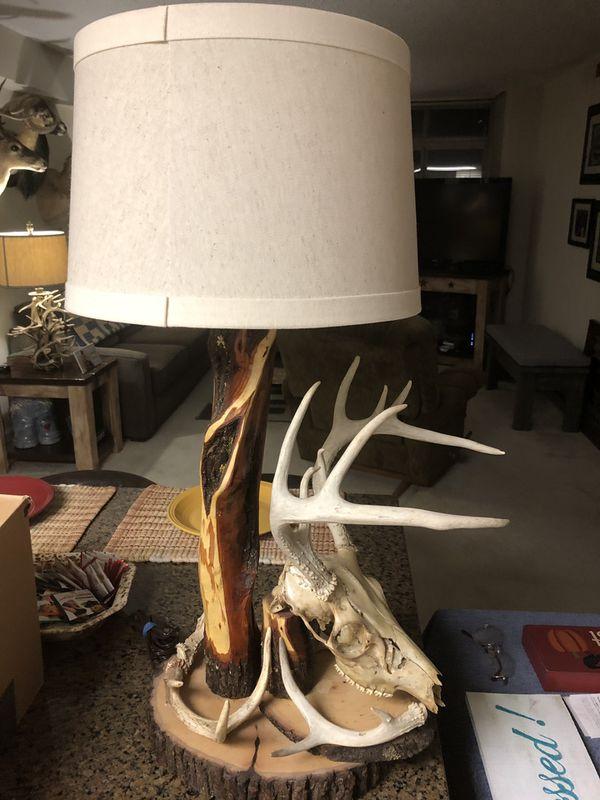 Homemade deer skull /antlers lamp