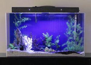 50 Gallon Aquarium - Clear-for-Life for Sale in Orange, CA