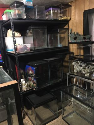 Fish and reptile tanks, stands and supplies for Sale in York Haven, PA