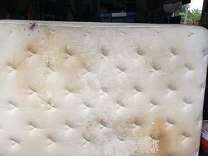Free Queen size mattress and box spring for Sale in Marysville, WA