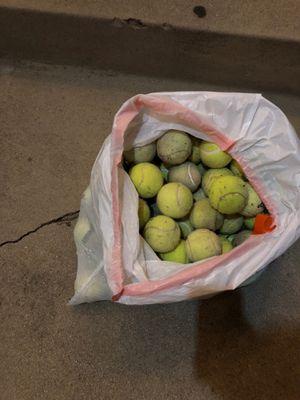 Free tennis balls for Sale in Fullerton, CA