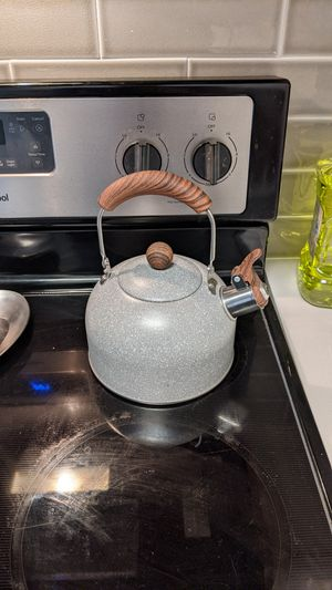 Stone Finish Whistling Teapot Teakettle one ofa kind for Sale in Fort Lauderdale, FL