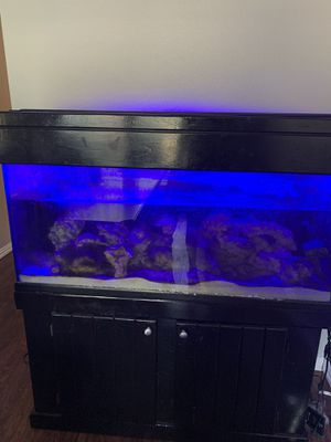 75 gal drilled aquarium fish tank for Sale in Plano, TX