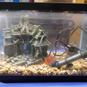 Fish, Reptile Tank With Rocks, Heater And More for Sale in Lake Forest Park, WA