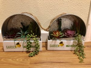 Fake succulents for Sale in Lake Oswego, OR