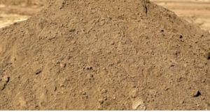 Need free dirt plz (Ruskin) for Sale in Ruskin, FL