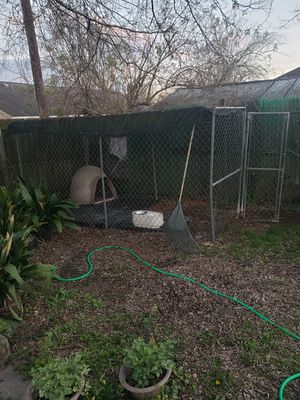 dog kennel , igloo and mats for Sale in Baton Rouge, LA