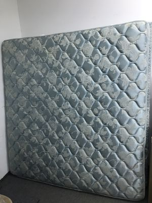 King Bed Set - Frame, Box Spring, Mattress for Sale in West Columbia, SC