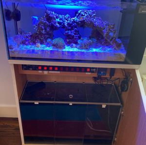 Reef Tank Peninsula For Sale for Sale in Waldorf, MD