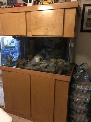 Salt water aquarium for Sale in Winter Haven, FL