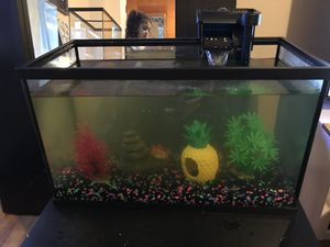 Fish tank for Sale in Linden, NJ