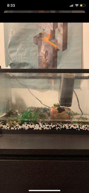 10 gallon fish for Sale in Milford, DE
