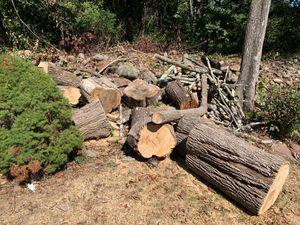 Seasoned wood .. for Sale in Farmington, CT