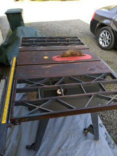 Table saw for Sale in Elmira, OR