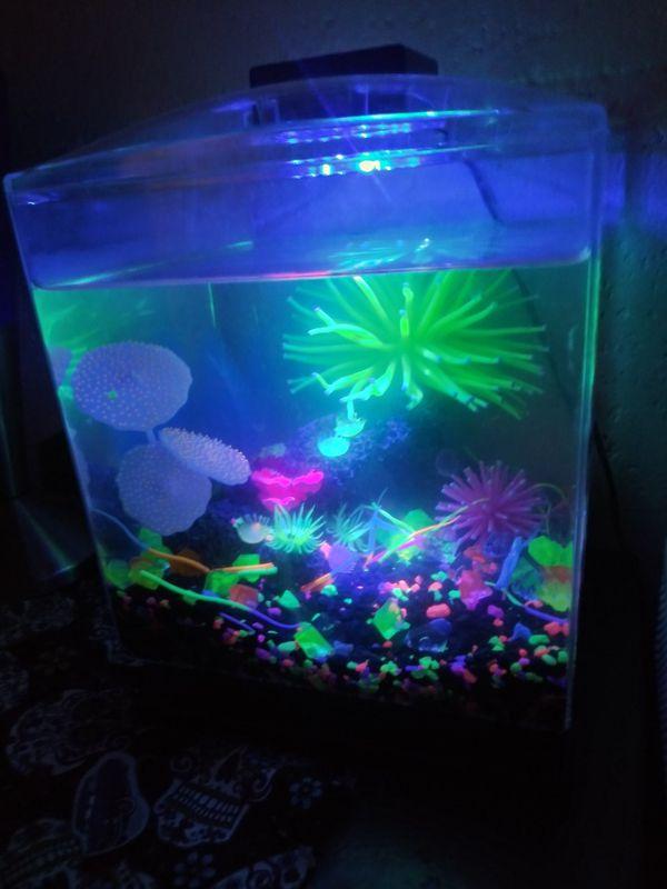 Small Glow Tank