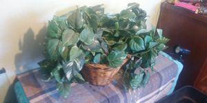Fake plant decor for Sale in Fresno, CA