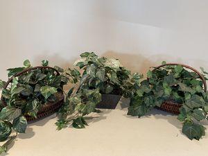 Silk Plants for Sale in Layton, UT
