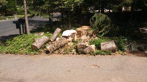 Free Firewood Oak you haul away for Sale in Magalia, CA
