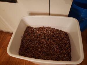 Gravel fish tank for Sale in Denver, CO