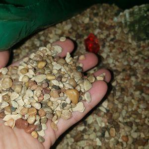 Gravel Sand For Aquarium for Sale in Los Angeles, CA