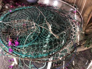 Crab nets for sale for Sale in Richmond, CA