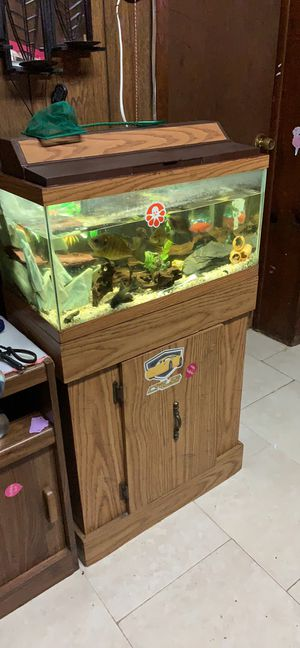Aquarium tank and stand for Sale in Queens, NY