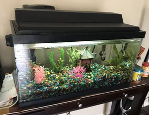 20 Gallon Fish Tank with lots of extras for Sale in Beaverton, OR