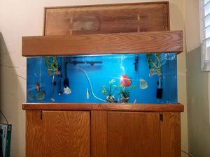 55 gallon acrylic aquarium for Sale in Glendora, CA