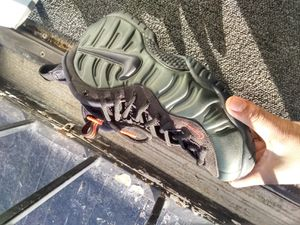 Sz 11.5 Foamposites , Nikes , Jordans , addidas for Sale in Buffalo, NY