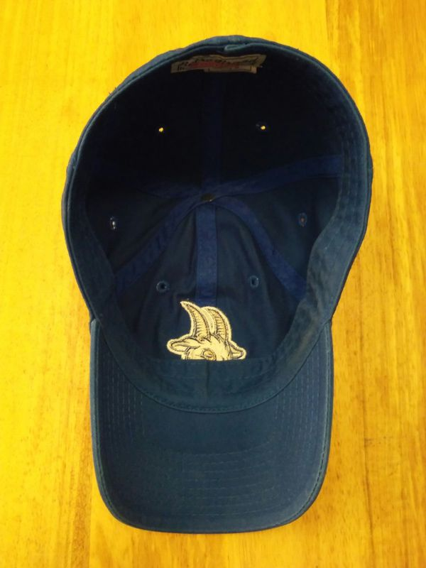 Hartford Yard Goats MiLB Slouch Adjustable Hat by Retro Brand